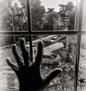 MarieFa Alizard - Vu De Ma Fenêtre 2