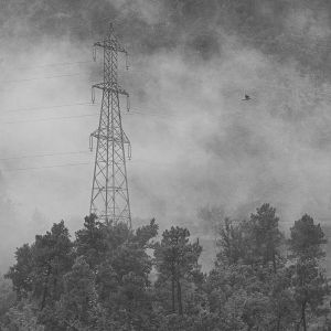 Pascal Borde - Vu De Ma Fenêtre - 1 Dans Le Brouillard