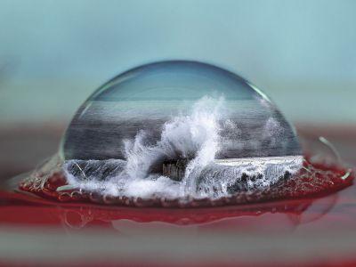 Philippe Galazzo - Dans Un Bocal 1 - Bulle de mer