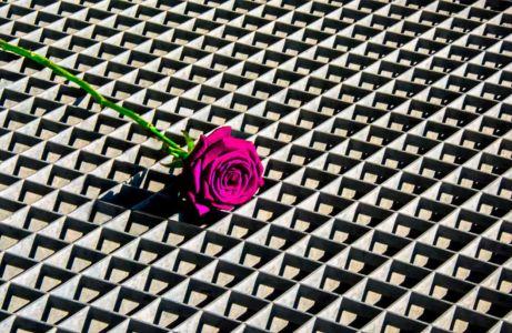 Jean-Paul Orlandini, rose métal